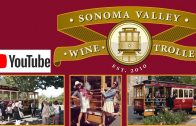 Carneros AVA Region Unforgettable Wineries of Napa/Sonoma (part 2 of the series)